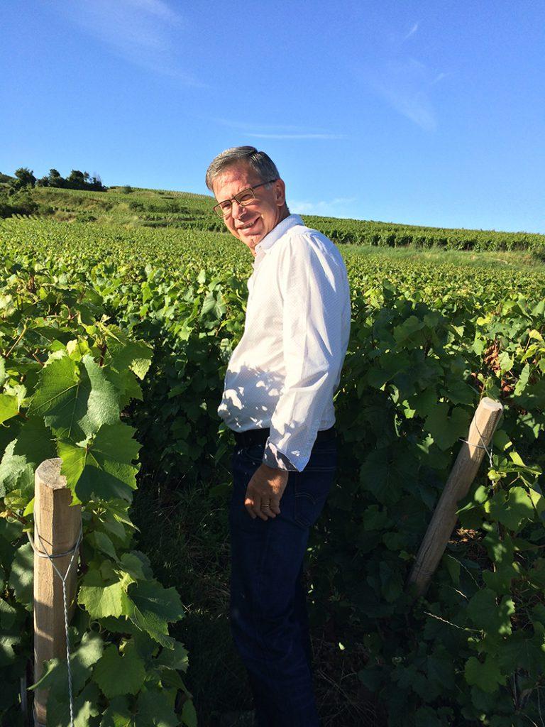 Le vignoble du Champagne Beaudouin-Latrompette